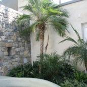 Bruchsteinmauer 1