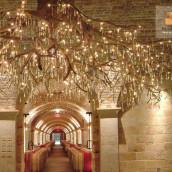 Weinkellerbau Beleuchtung