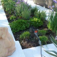 007 (3) - Gartenanlage-Levante-Crema 2