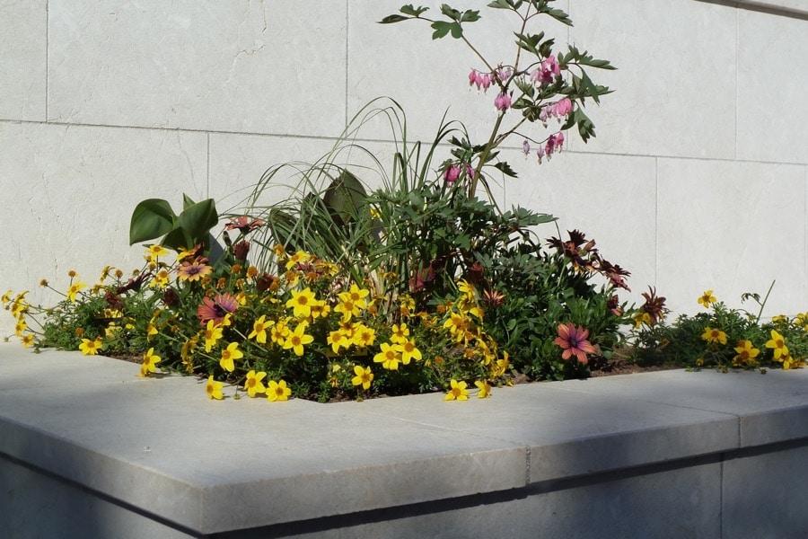 017 (3) - Gartenanlage-Levante-Crema 2