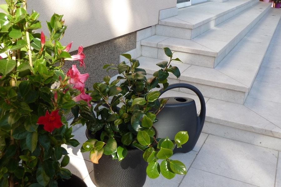 020 (3) - Gartenanlage-Levante-Crema 2